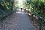 Person riding a bike on the Belgrave Rail Trail